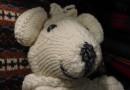 Irischer Teddybär