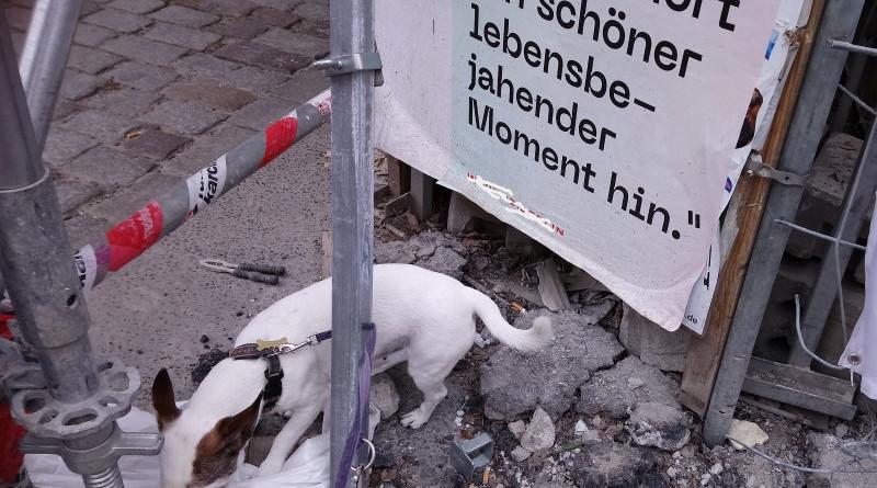 Irish Berlin Ende April/Mai